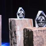 Buurtzorg in de race voor prijs 'Beste Werkgevers 2016'