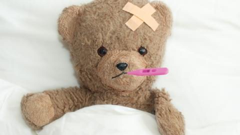 Landelijk Gemiddelde Ziekteverzuim : Schoonmaak scoort hoog in ziekteverzuim service management