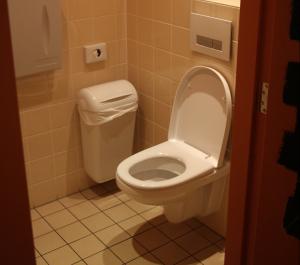 In Het Toilet.10 Weetjes Over Het Toilet Service Management Checklists