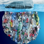 Gescheiden plastic afval vaak alsnog verbrandingsoven in