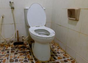 vies toilet schrikt af