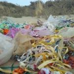 Allesbehalve schoon: ruim 1900 ballonnen weggehaald van de stranden