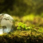 Ecolabel schoonmaak